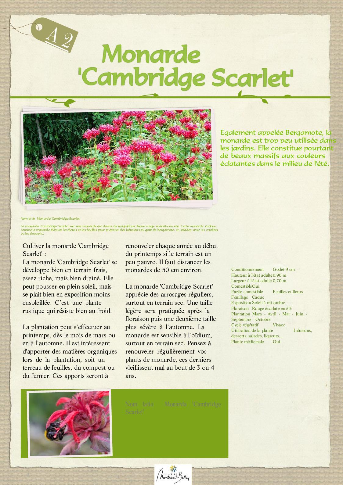 Plante A Planter En Septembre calaméo - a2