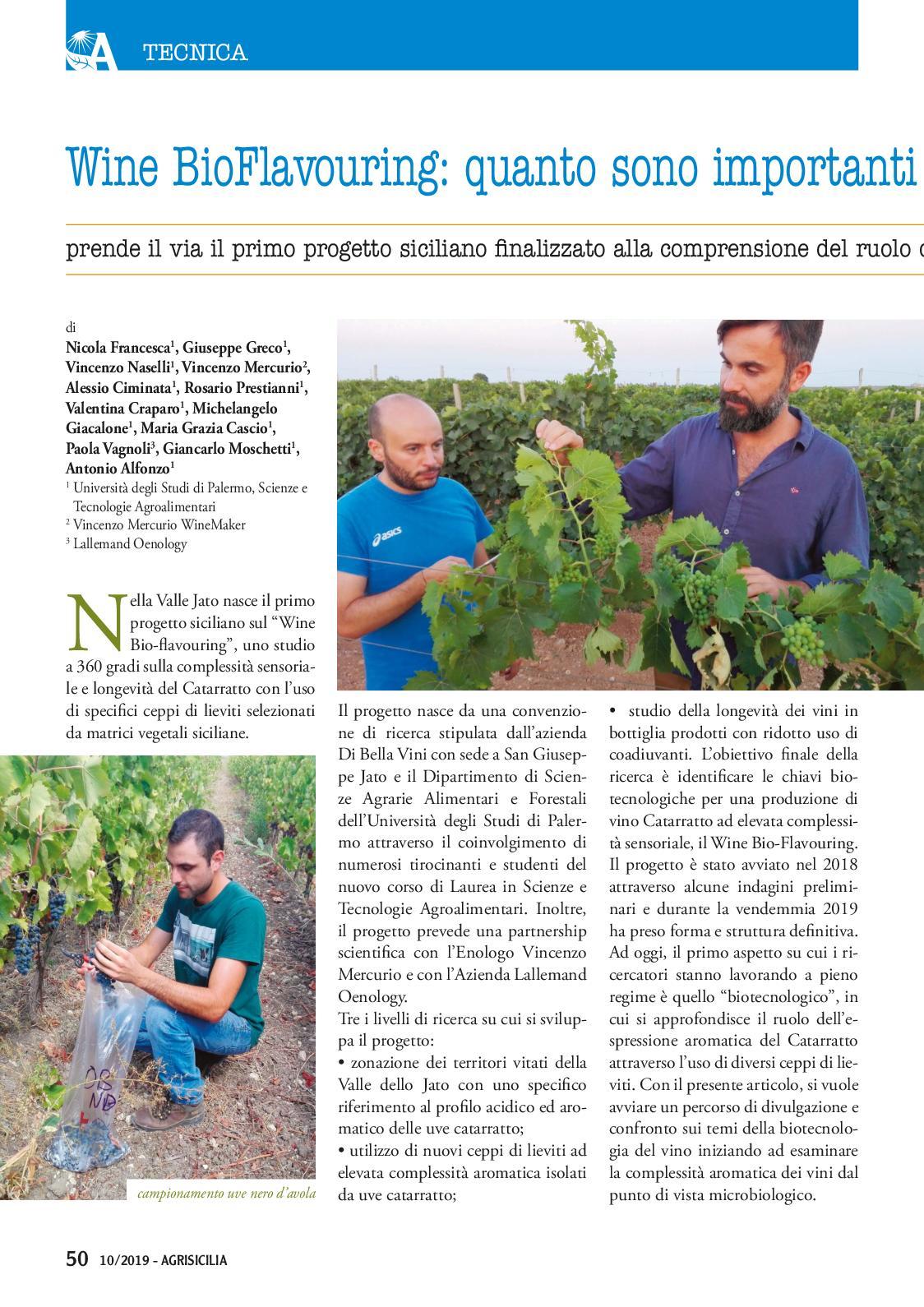 Uno Studio In Nero agrisicilia n.10 - ottobre 2019 - calameo downloader
