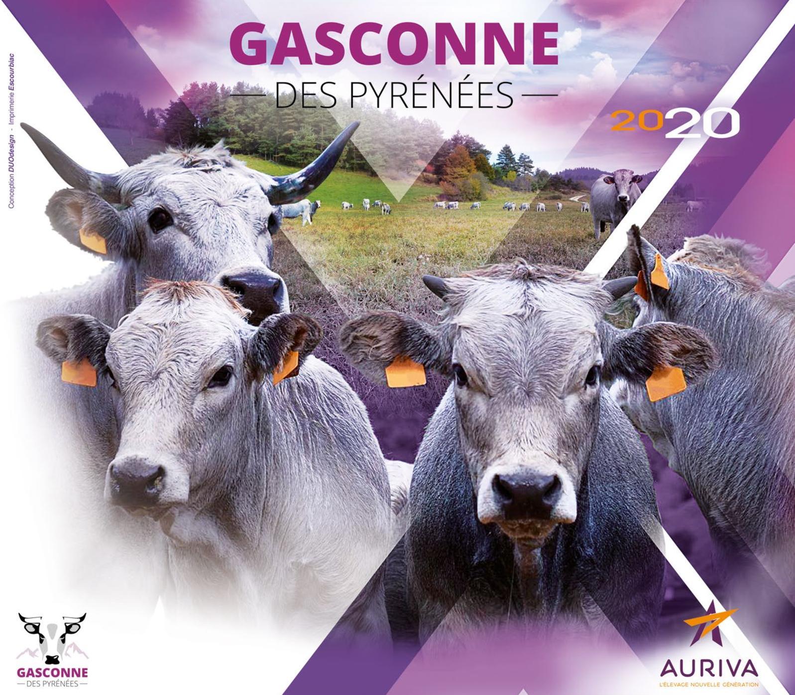 Catalogue Gascon 2020