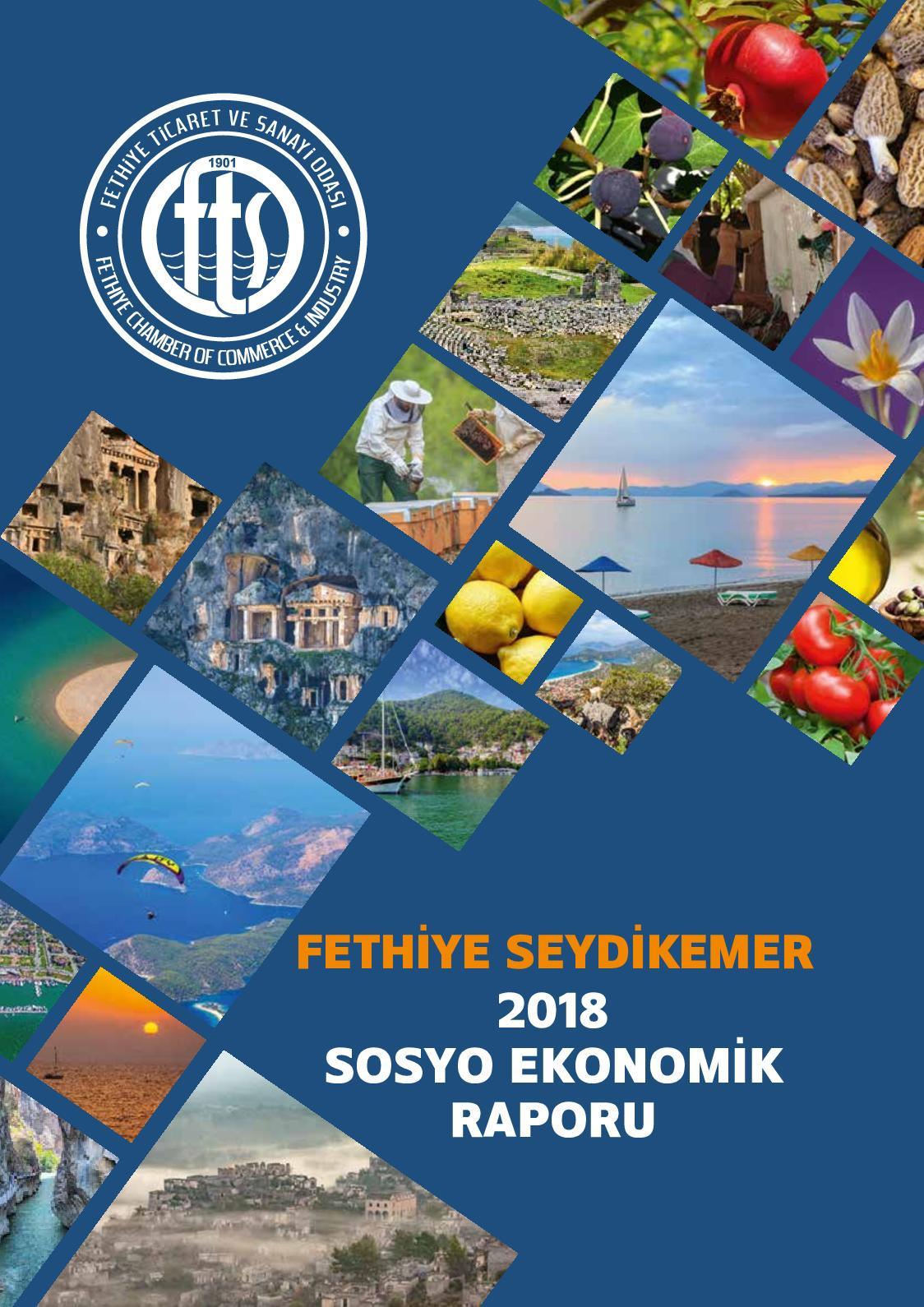 Calameo Fethiye Ticaret Ve Sanayi Odasi Sosyo Ekonomik Rapor 2018