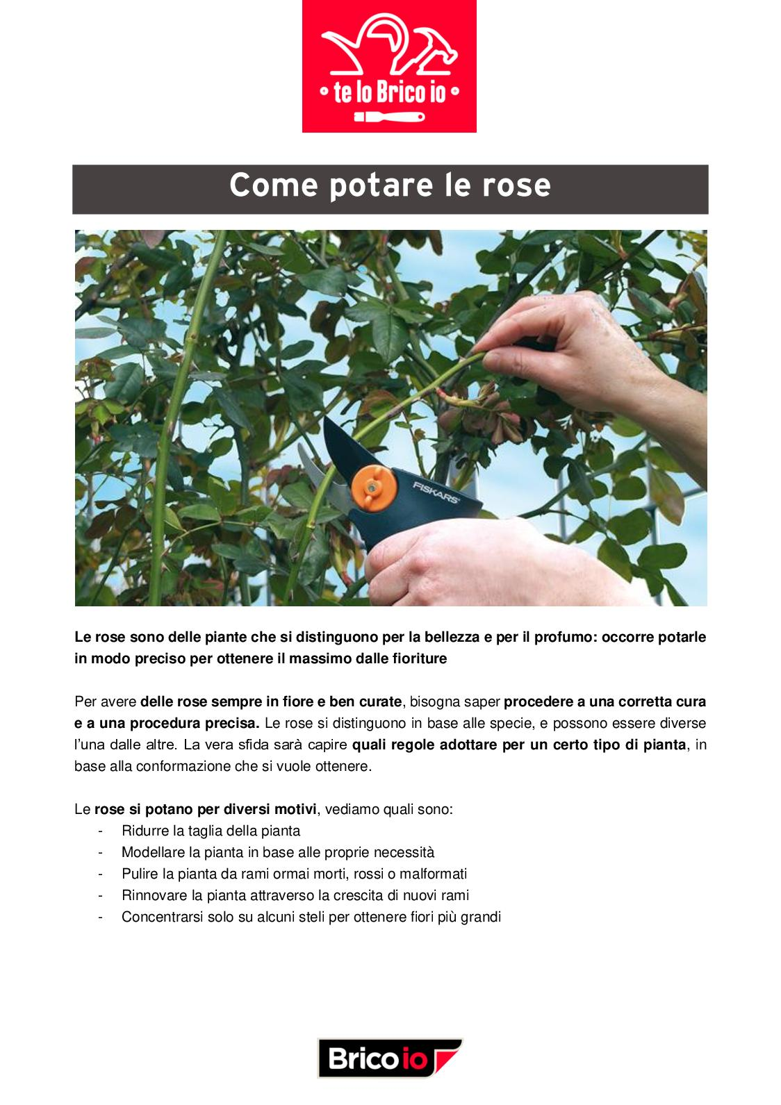 Tutori Per Rose Rampicanti calaméo - come potare le rose