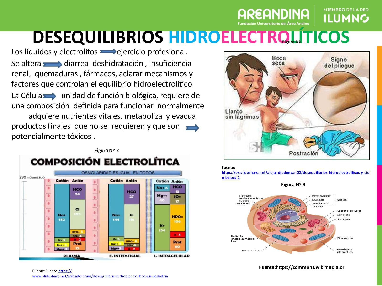 desequilibrio hidroelectrolitico signos y sintomas pdf