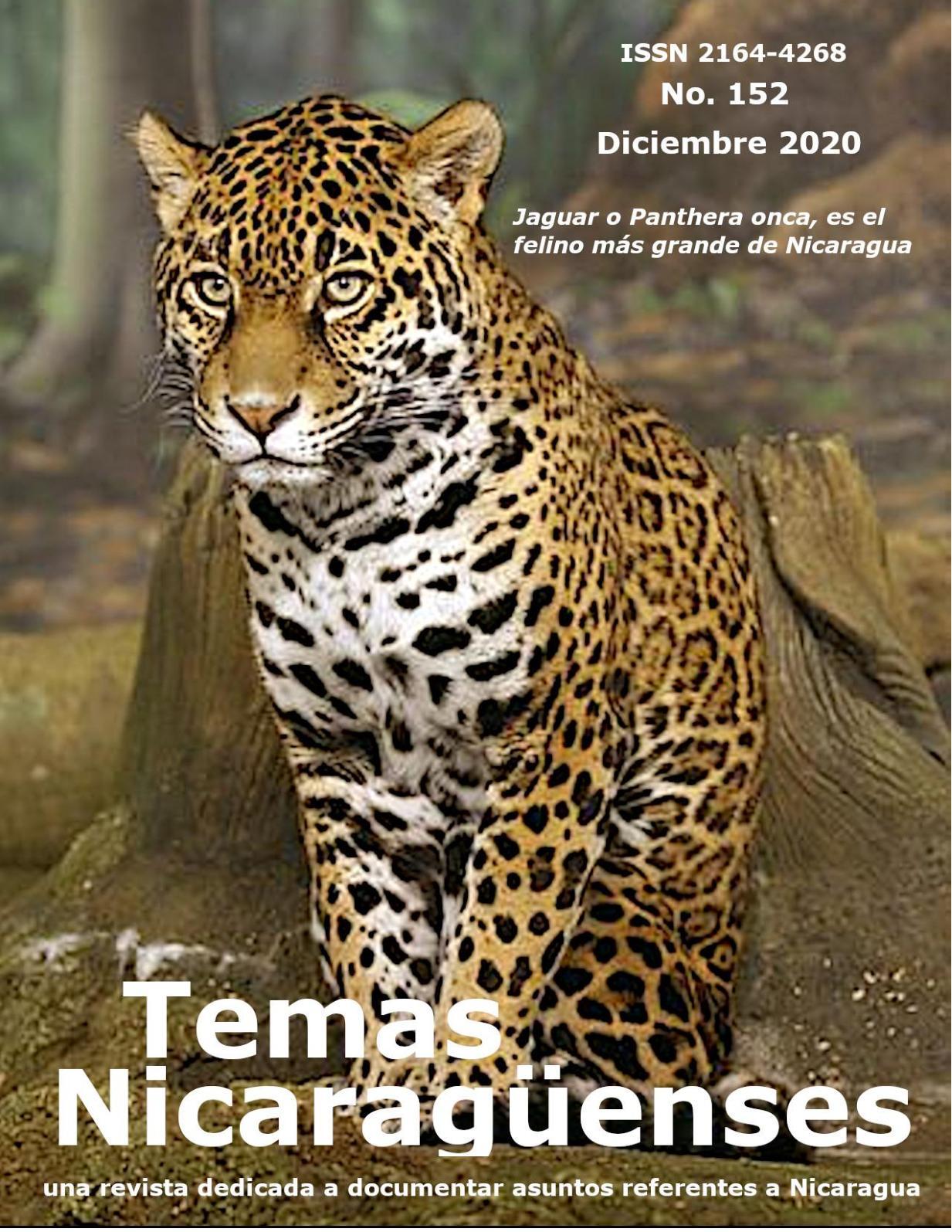 Calaméo   Rtn 8 Diciembre 8