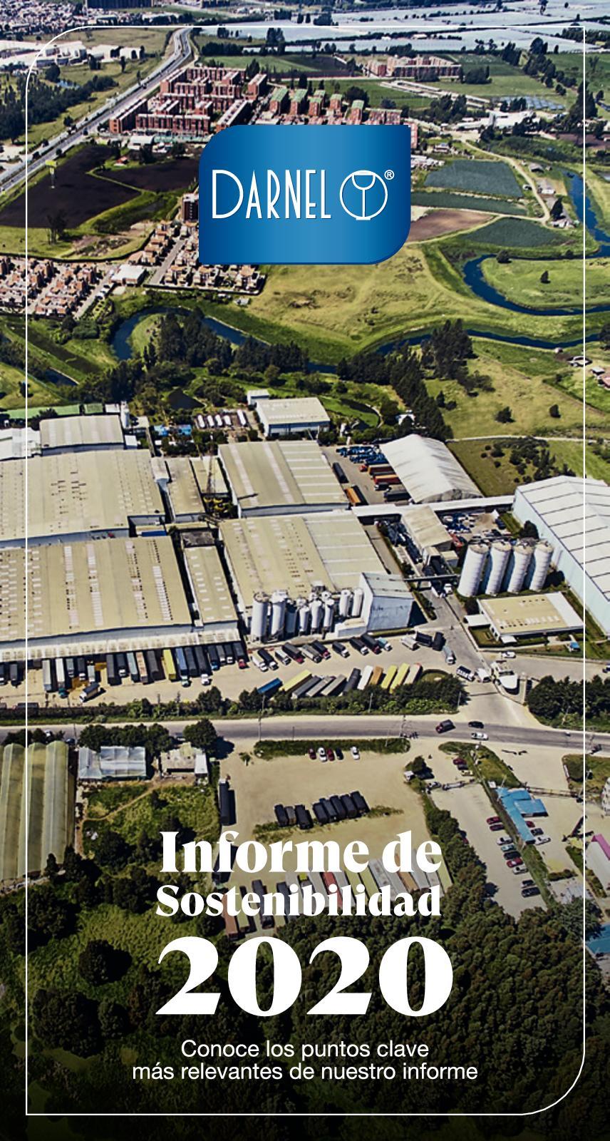 Informe Sostenibilidad Darnel 2020